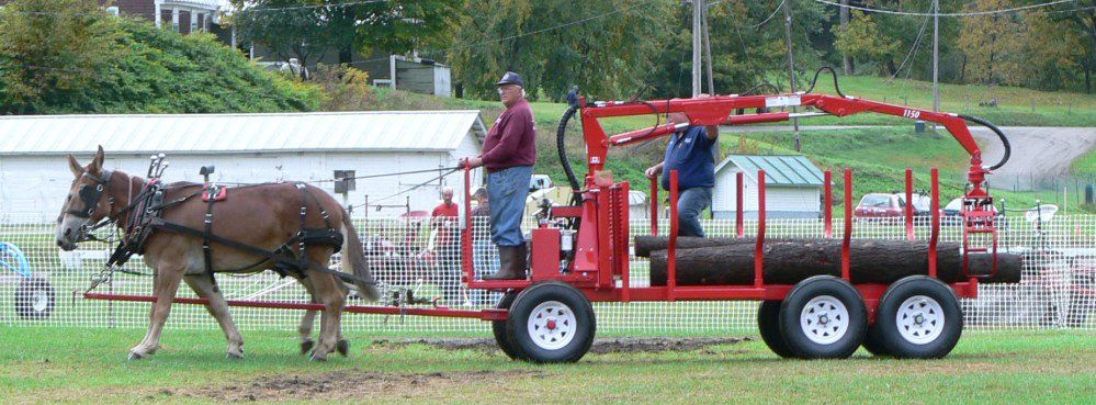 Buy Horse-Drawn Log Loaders and Trailers2